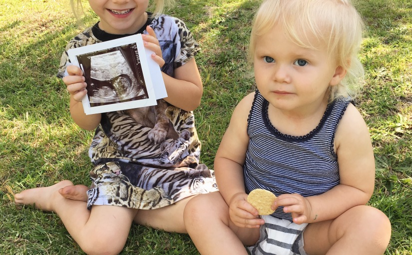 Yay! BABY #3 IS ON IT'SWAY